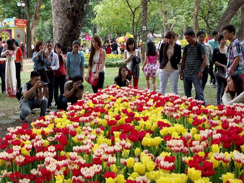 Trưng bày chim cảnh và thi cắm hoa, mâm quả tại Hội Hoa Xuân TP.HCM