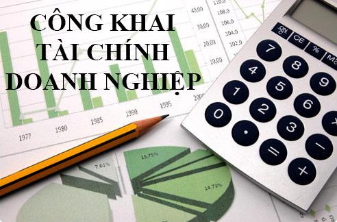 Báo cáo tài chính doanh nghiệp năm 2015
