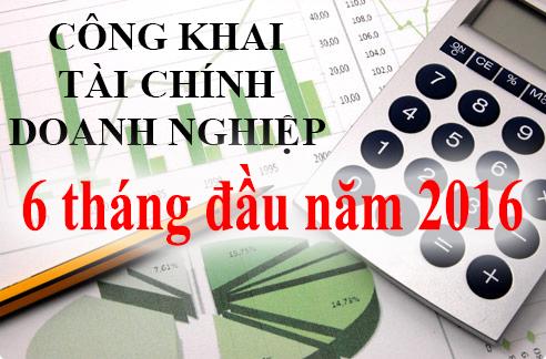 Báo cáo tài chính doanh nghiệp 6 tháng đầu năm 2016