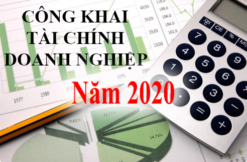 Báo cáo tài chính năm 2020