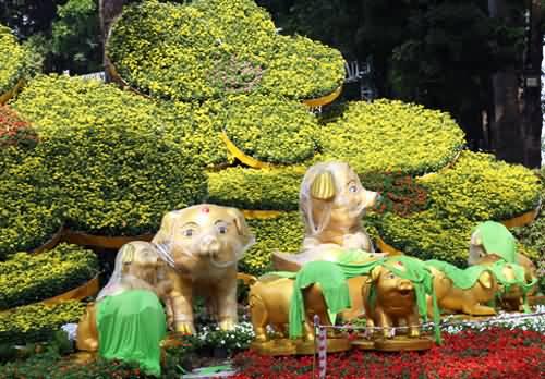 3.000 kỳ hoa dị thảo ở Hội hoa xuân lớn nhất TP HCM