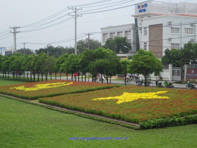 Tăng cường hoa, kiểng chào mừng Đại hội Đại biểu Đảng bộ thành phố lần thứ IX