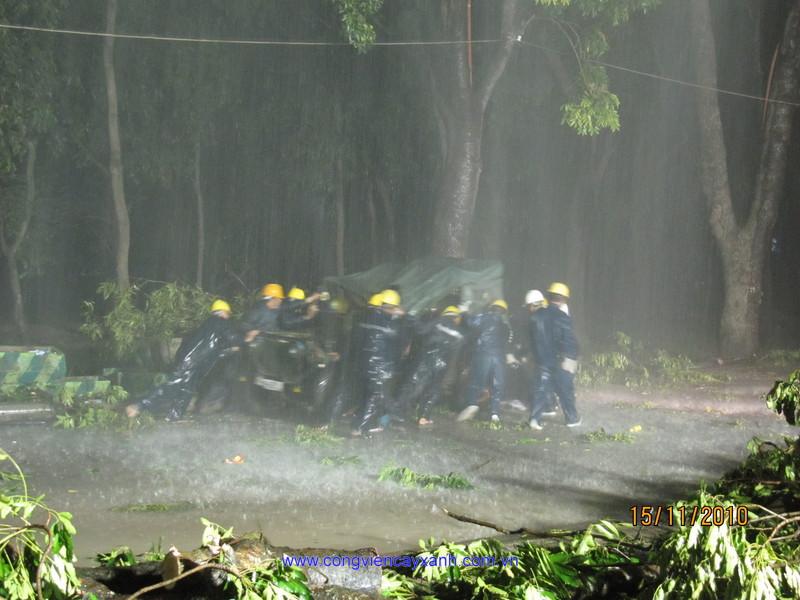 Tổ chức diễn tập công tác cứu nạn, cứu hộ