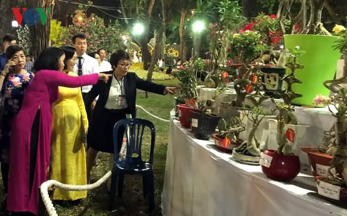 http://congviencayxanh.com.vn/hoi-hoa-xuan--cho-hoa-tet-tp-hcm/-ky-hoa-di-thao--trung-bay-tai-cong-vien-tao-dan-dip-tet-ky-hoi-2019/571/